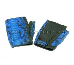 Snakeskin gloves blue color AC-65