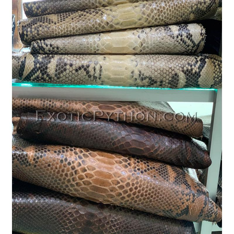 Python skin color any SK-59