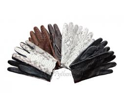 Exotic leather gloves AC-1