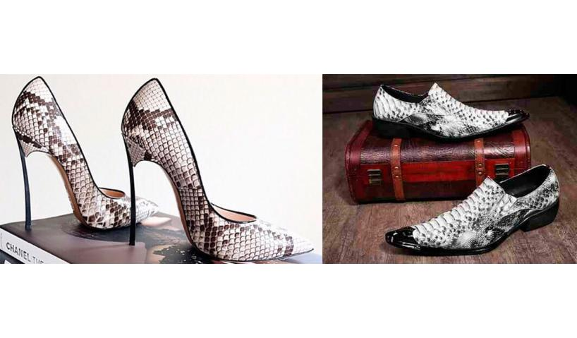 Snakeskin shoes - A Hot New Fashion Trend