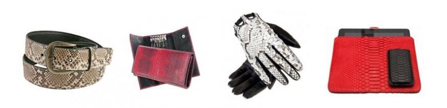 Snakeskin Accessories